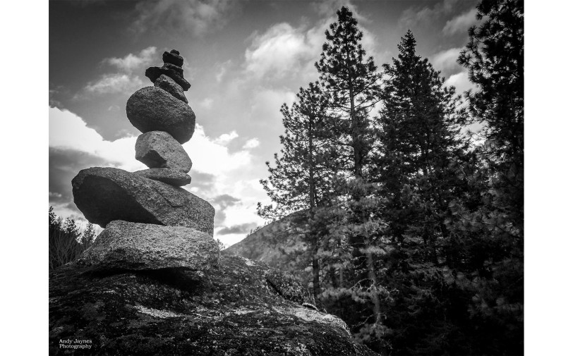Cairn and Trees in Black and White - 2017