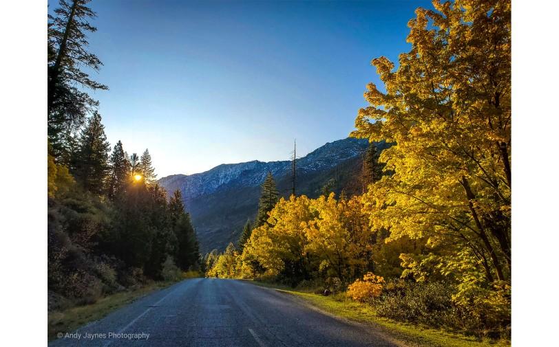 Fall morning Mountain Road - 2019