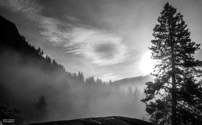 Misty Morning Sunlight - 2018