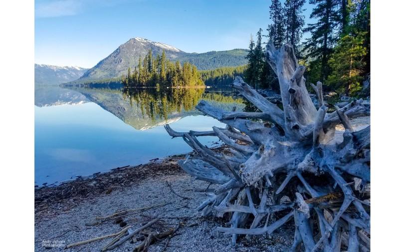 Lake Wenatchee Driftwood Reflections-1 - 2019