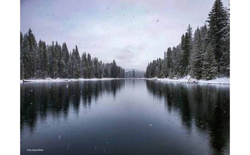 Lake Wenatchee Snow 6 - Dec 2019