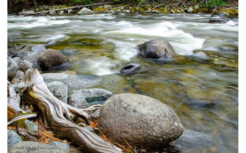 Wood Stone Water - 2019