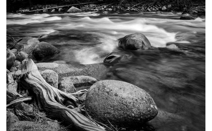 Wood Stone Water in black & white - 2019